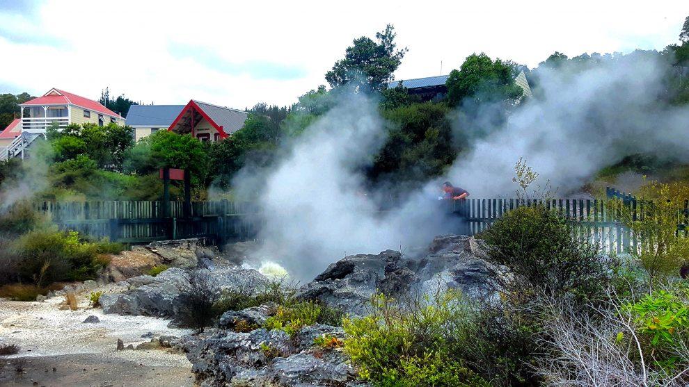l'activité géothermique de rotorua