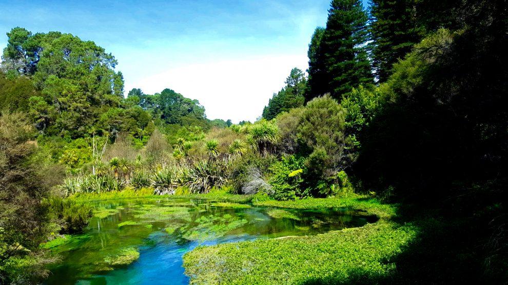 blue spring couleurs rivière